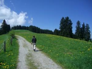 hiking-245351_1280
