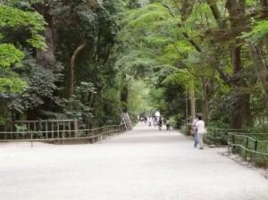 shimogamo04-500x373