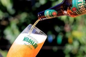 beer-827580_640