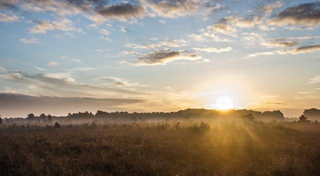日の出朝日☀